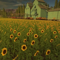 Farming Simulator 2017: Novi usevi !